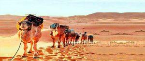 Marrakech a Zagora